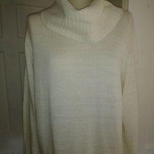 Faded Glory Turtleneck Sweater